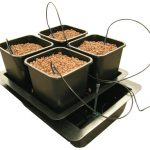 Atami Wilma System Large 4 Pflanzen 11L Topf Picture
