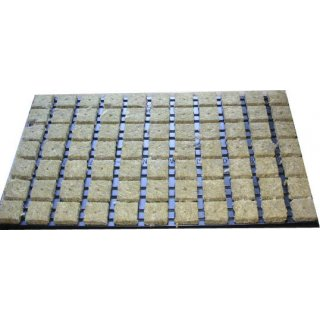 Steinwollwürfel im Tray 4x4cm 77 Stück Picture
