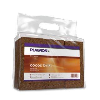 Plagron Cocos Brix 6x 9 Liter Picture