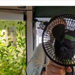 Gegen die Montagslaune – heute mit frischem Wind für dein Homegrow  Projekt Post Thumbnail